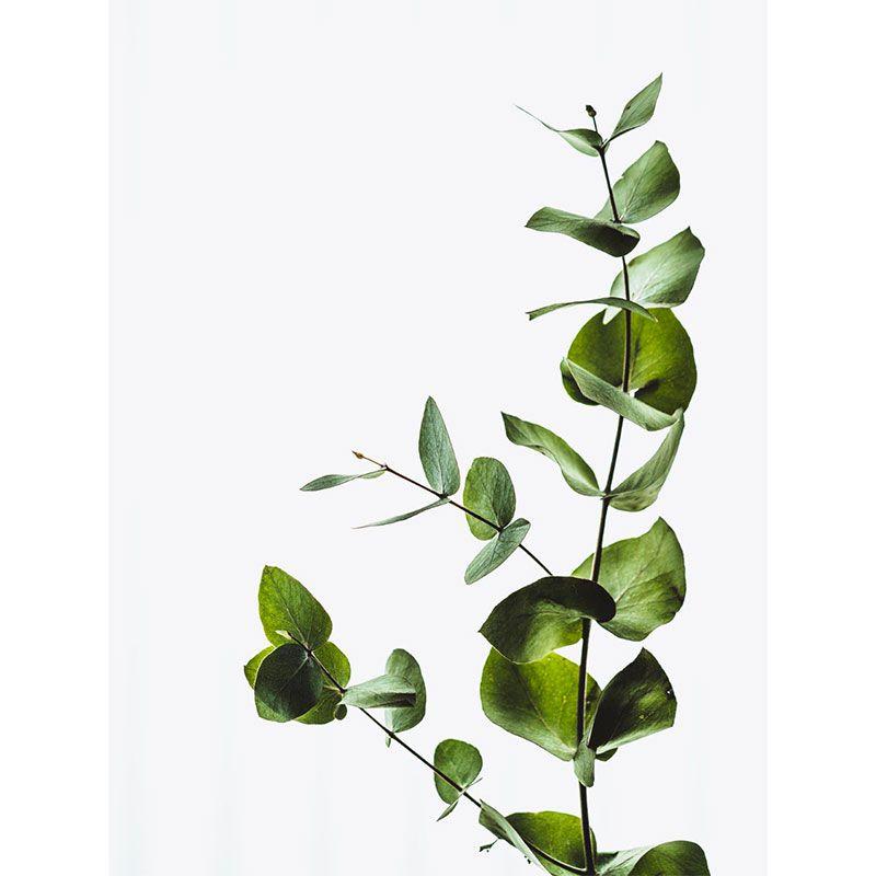 Quadro decorativo em canvas folhas