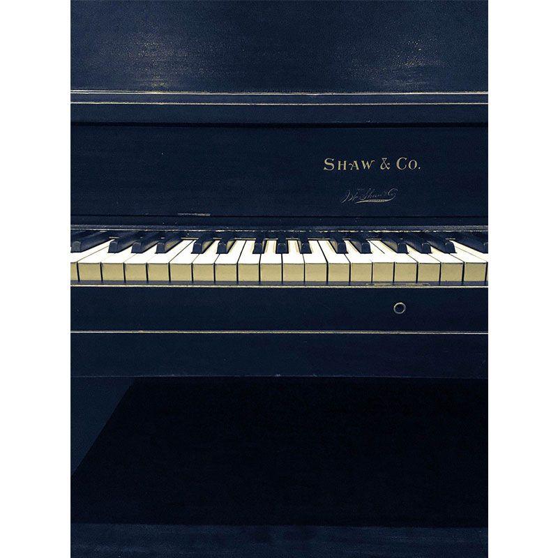 Quadro decorativo em canvas piano