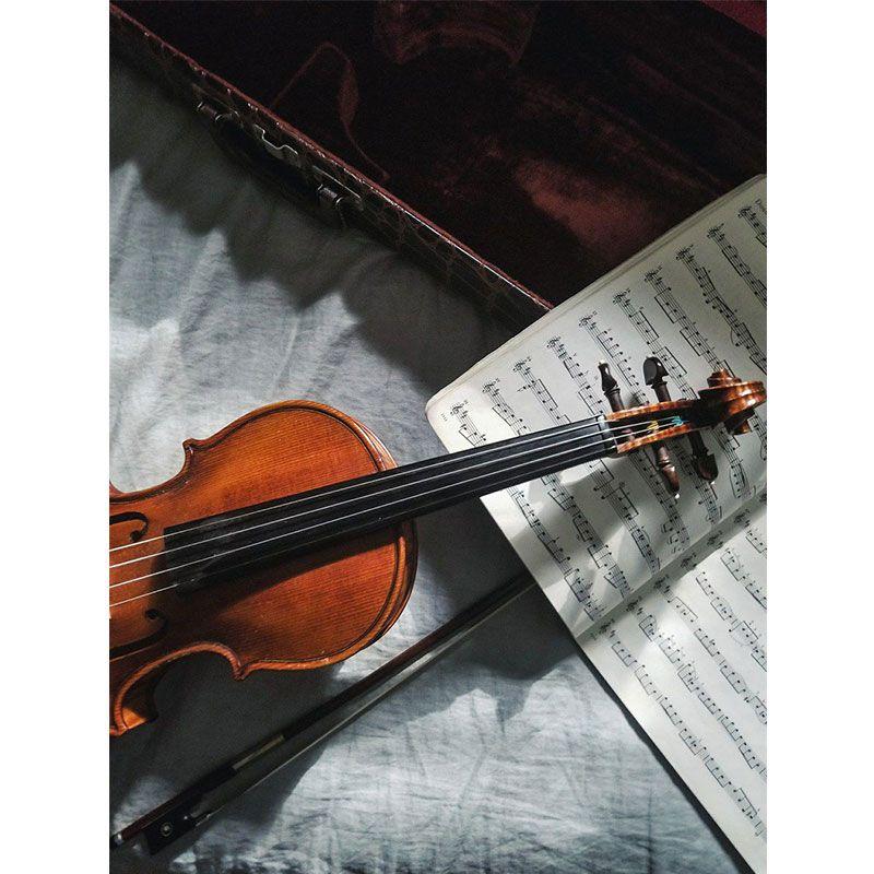 Quadro decorativo em canvas Violino