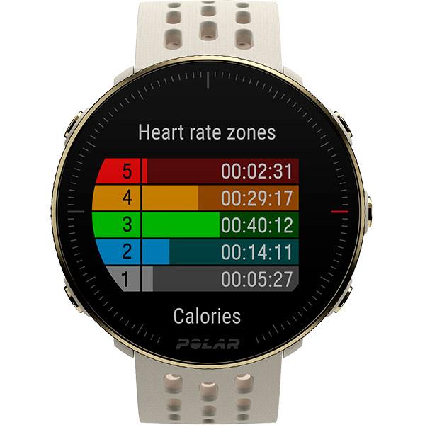 Relógio GPS Multiesportes Monitor Cardíaco de Pulso Polar Vantage M2 Champagne/Gold  - TREINIT