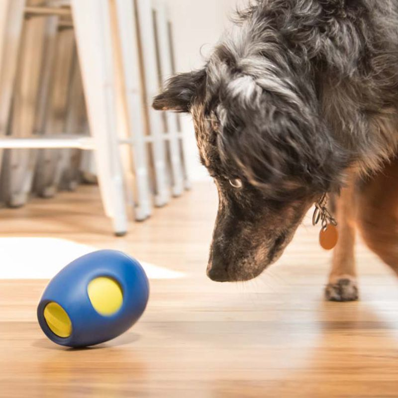 TIKR-  Brinquedo Interativo Para Cães