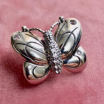 Charm Borboleta Decorativa Prata925