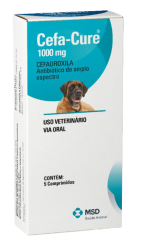 Antibiótico MSD Cefa Cure 1000 mg para Cães e Gatos
