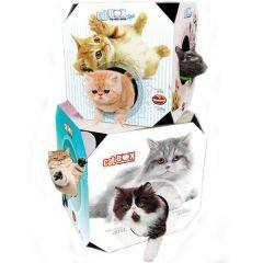 Brinquedo Furacão Pet Cat Box - Gato