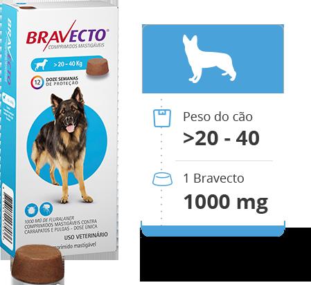 Antipulgas Bravecto Oral 1000 mg para Cães 20 a 40 kg