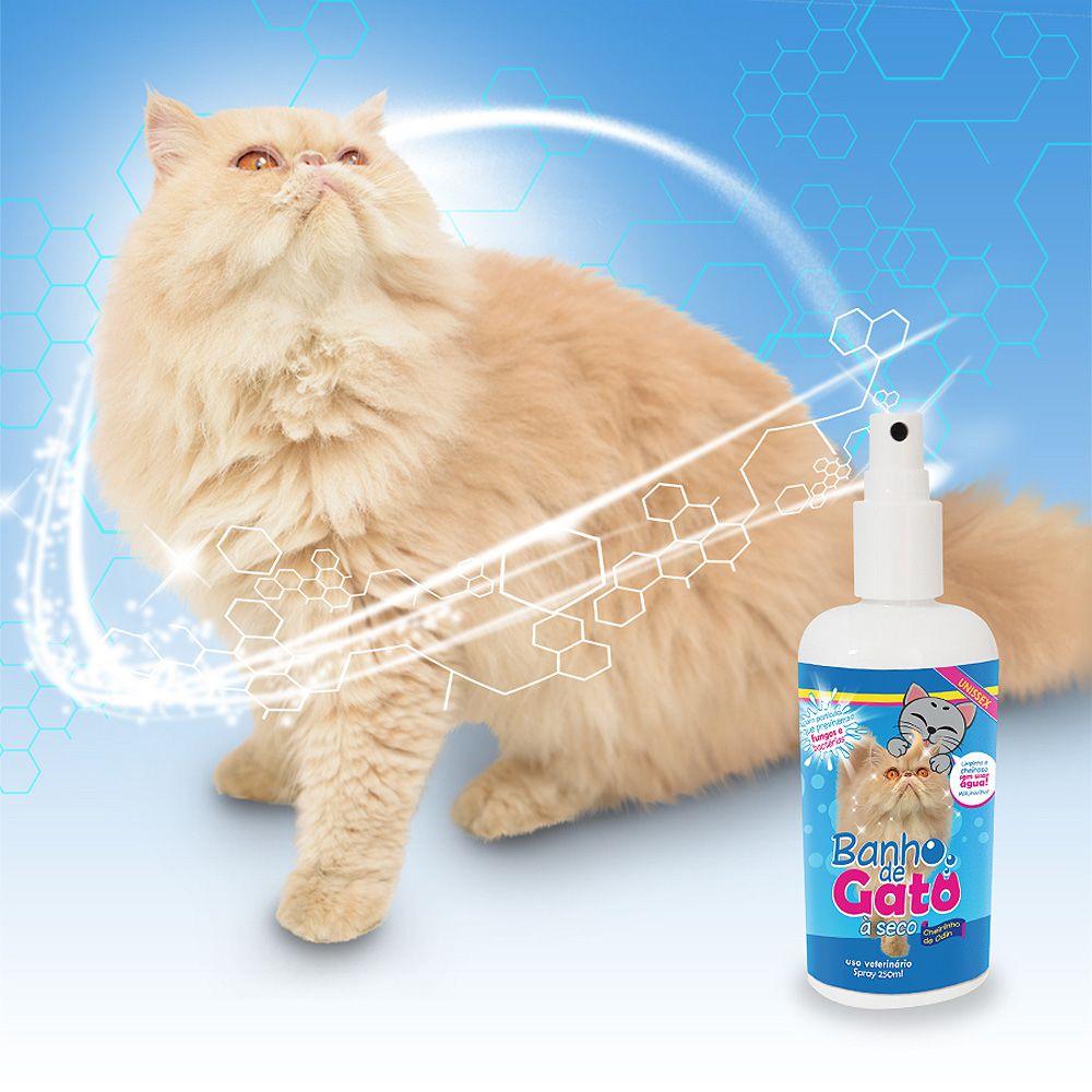 Banho de Gato à Seco - Cheirinho de Odin