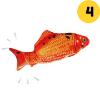 Peixe 4