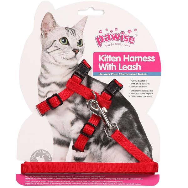 Peitoral Pawise com Guia Vermelho para Gatos
