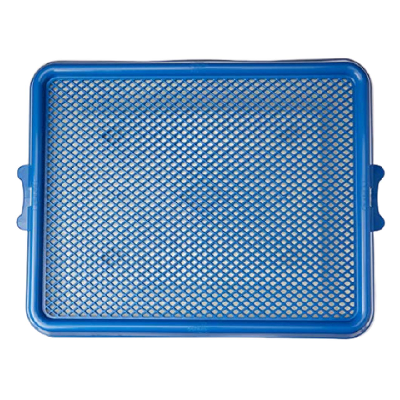 Sanitário Higiênico Pet Injet Xixi Pets Premium Azul
