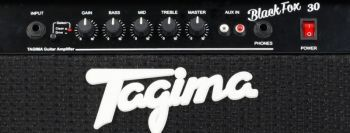 Amplificador Tagima Black Fox 30