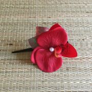 Bico de Pato Marrom Orquídea Vermelha