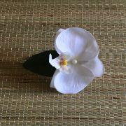 Bico de Pato Orquídea Branca