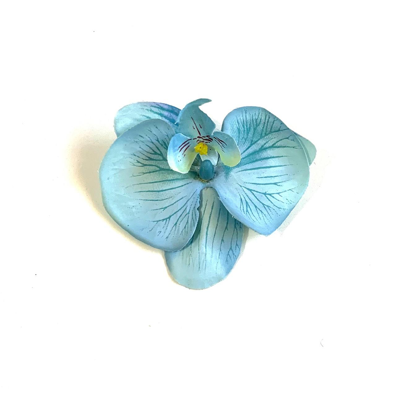 Bico de Papagaio Pequeno Orquídea Azul