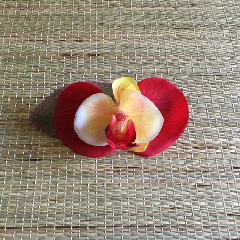 Bico de Pato Preto Orquídea Vermelha e Amarela