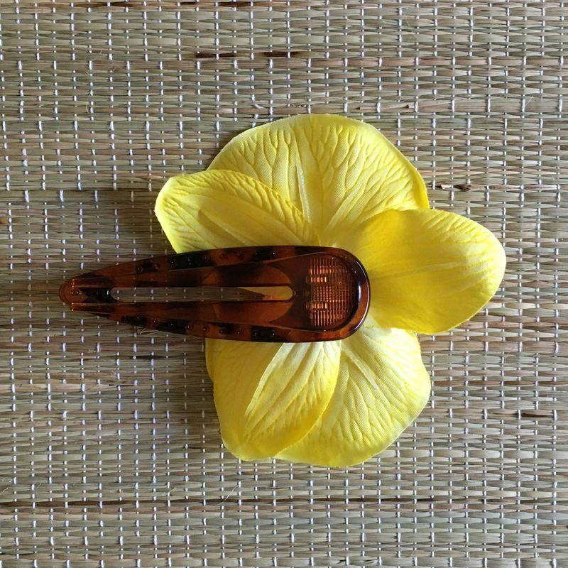 Bico de Pato Tartaruga Orquídea Amarela com Rosa