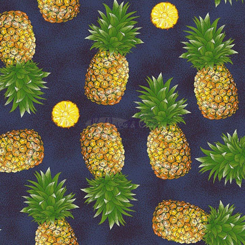 Caldeira Coleção Fruits - Abacaxi Marinho - 50cm x 150cm