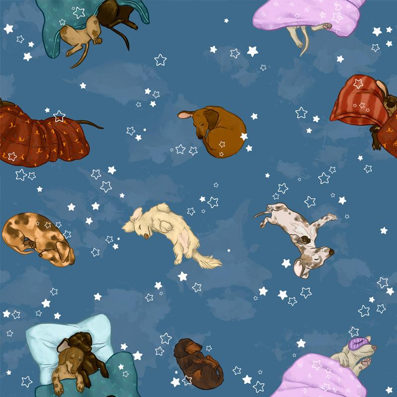 Casa Criativa Coleção Cachorro Salsicha - Salsicha Dormindo - 50cm X150cm