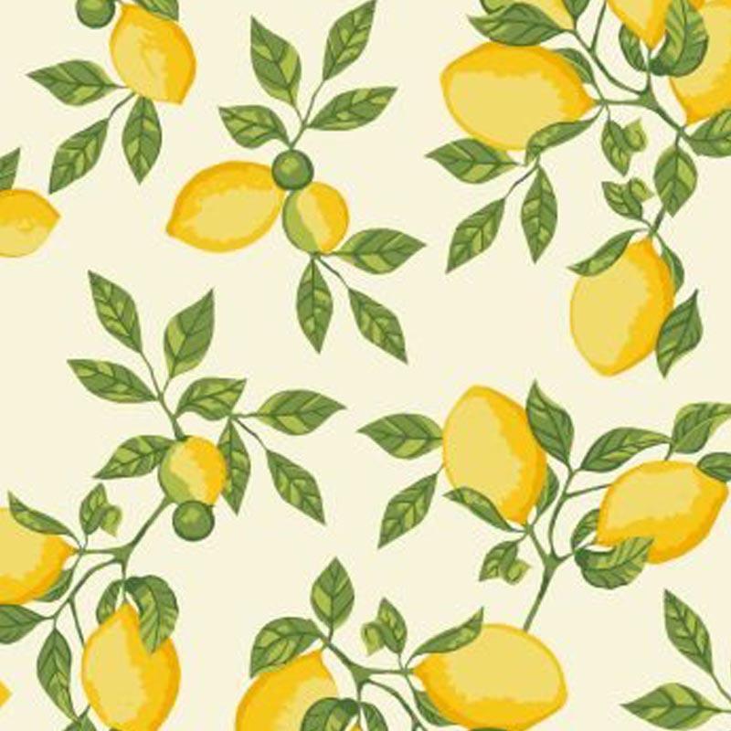 Eva e Eva Coleção Frutas - Limão Creme - 50cm x 150cm