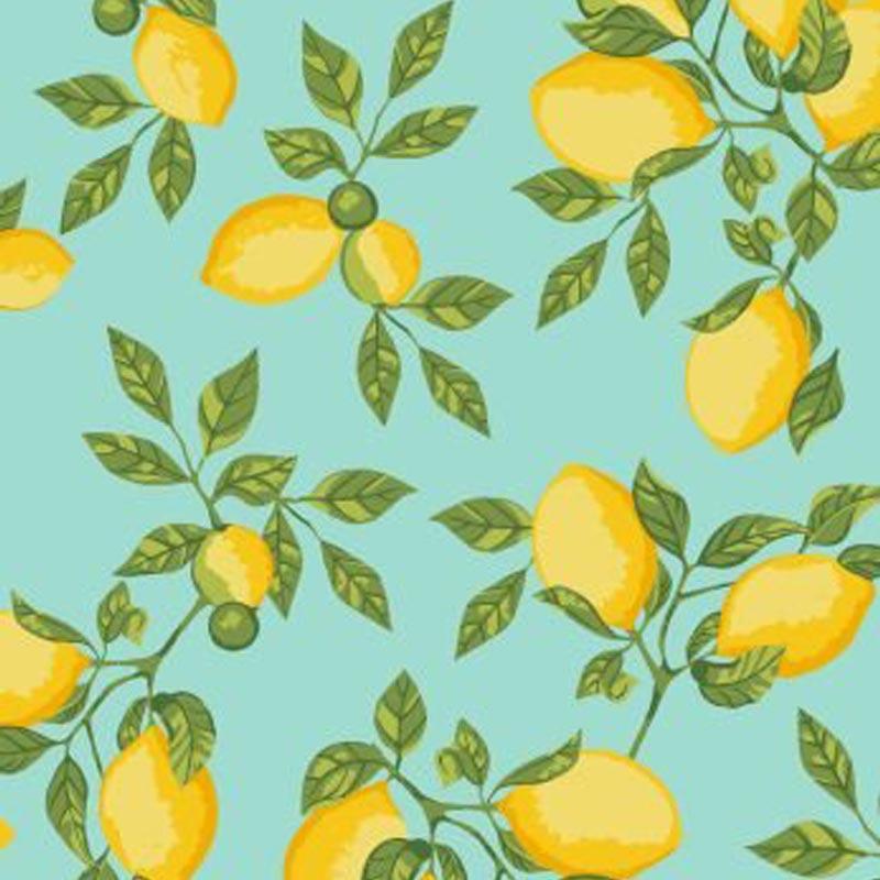 Eva e Eva Coleção Frutas - Limão Tiffany - 50cm x 150cm