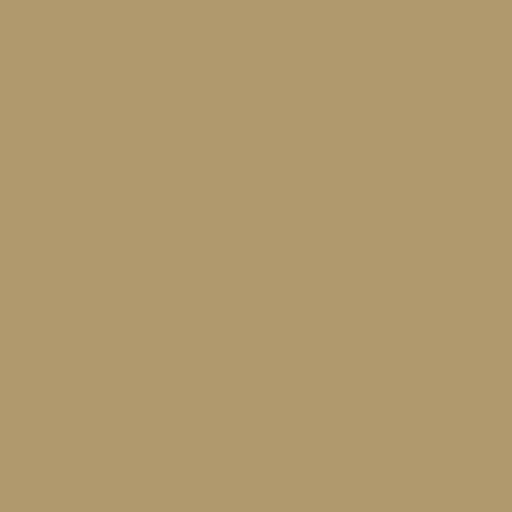 Fabricart Coleção Basics & Colors - Liso Café Com Leite - 50cm X150cm