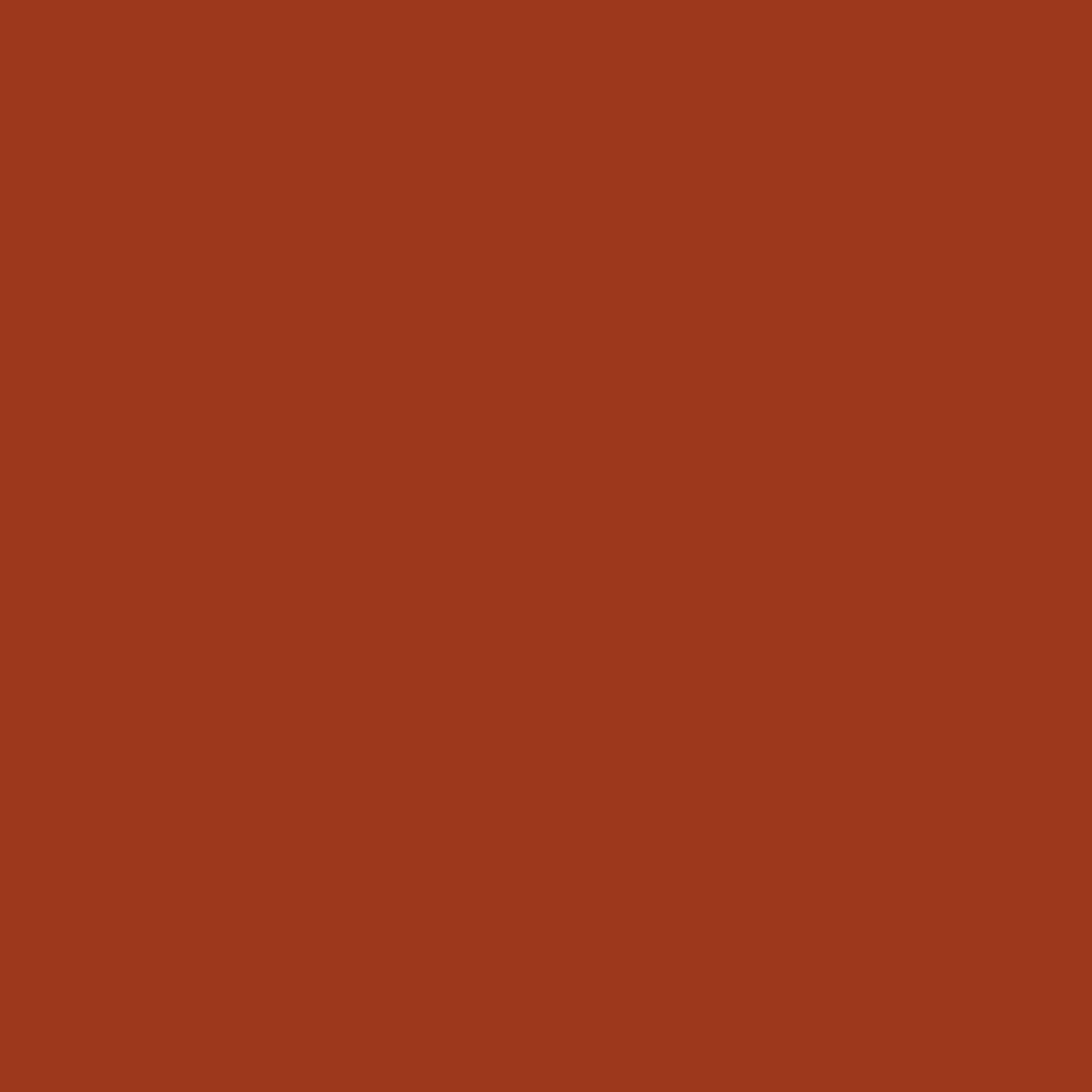 Fabricart Coleção Basics & Colors - Liso Ferrugem TT - 50cm X150cm