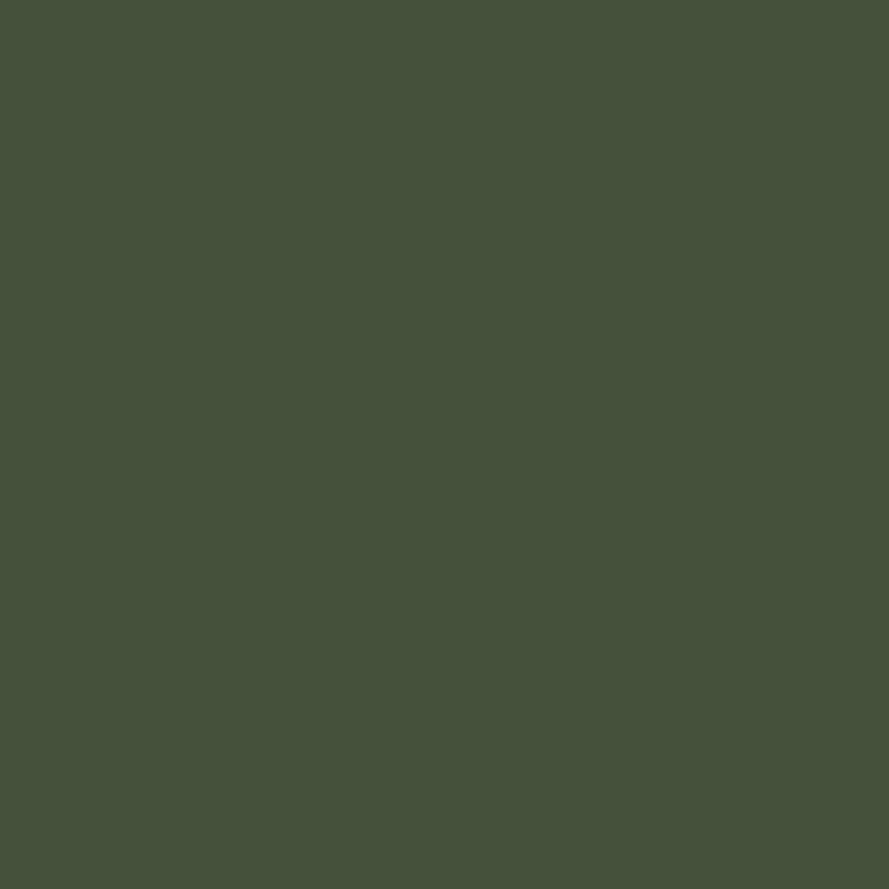 Fabricart Coleção Basics & Colors - Liso Verde Exército - 50cm X150cm