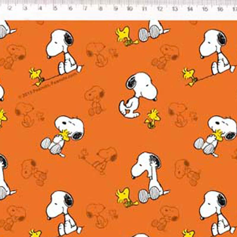 Fernando Maluhy - Coleção Snoopy  - Snoopy com Woodstock - 50cm X150cm