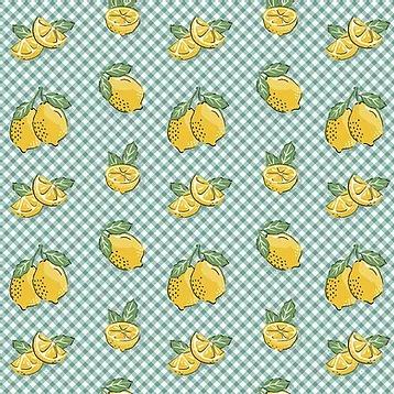 Fuxicos e Fricotes - Coleção Frutas - Mini Limão - 50cm X150cm
