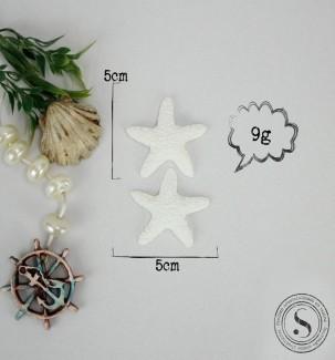 Aplique Resina Estrelas do Mar - EST 001 - Sandra Gotardo
