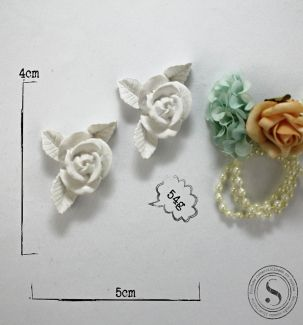 Flores - FO 006