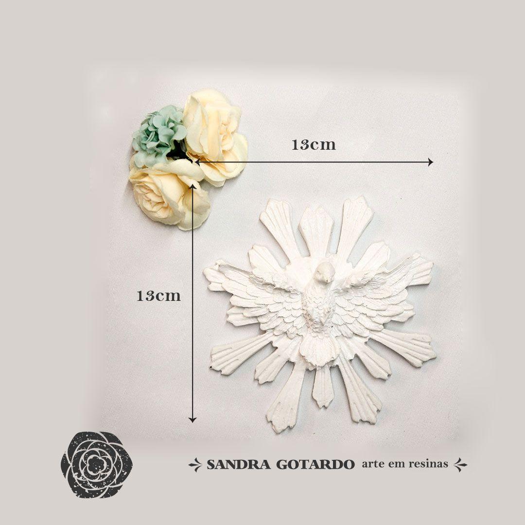 Aplique Resina Aplique espírito santo com resplendor 13X13X3 - resina  Ref ES045 - Sandra Gotardo