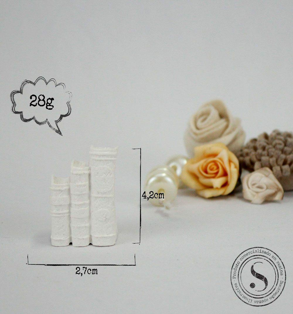 Aplique Resina Livros - AI013 - Sandra Gotardo