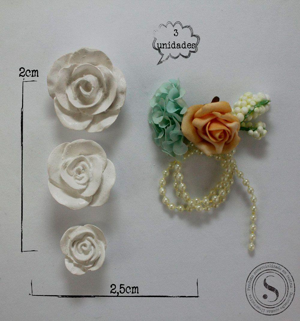 Rosas - FO 001