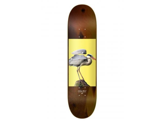 Shape Skate Drop Dead Foguinho