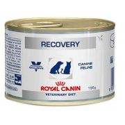 Ração Úmida Royal Canin Recovery Cães e Gatos 195g
