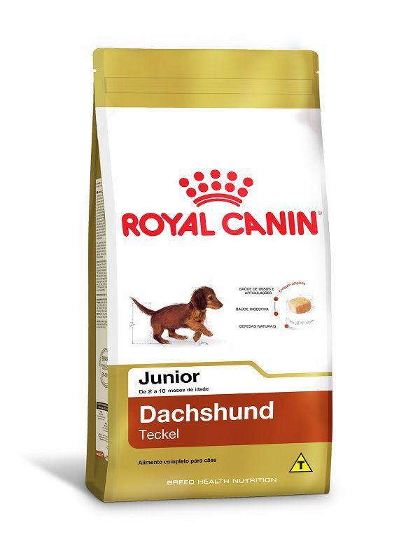 Ração Royal Canin Dachshund Cães Filhotes 2,5Kg