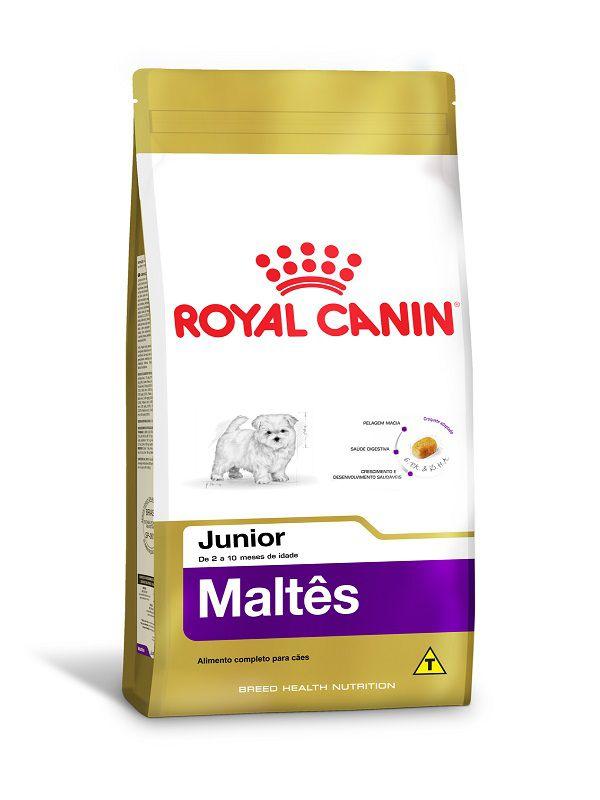 Ração Royal Canin Maltês Cães Filhotes