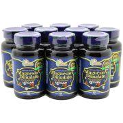 10 Magnesio Dimalato Pro 60 Capsulas - Vegano Puro 800mg
