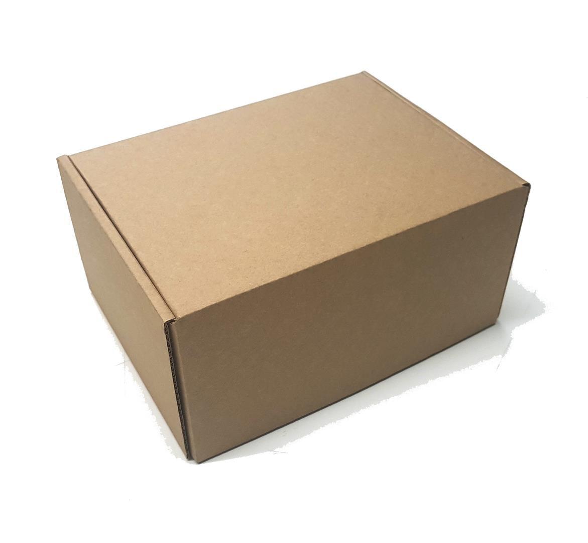 SEDEX Nº1 - Caixa de Transporte Correios - 18x13x8,5 cm - POS