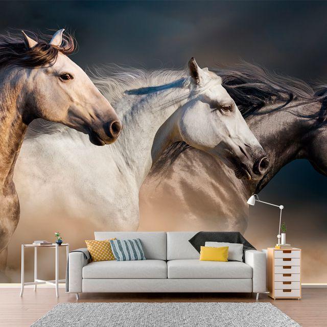 Adesivo de Parede Foto Mural Cavalo F003