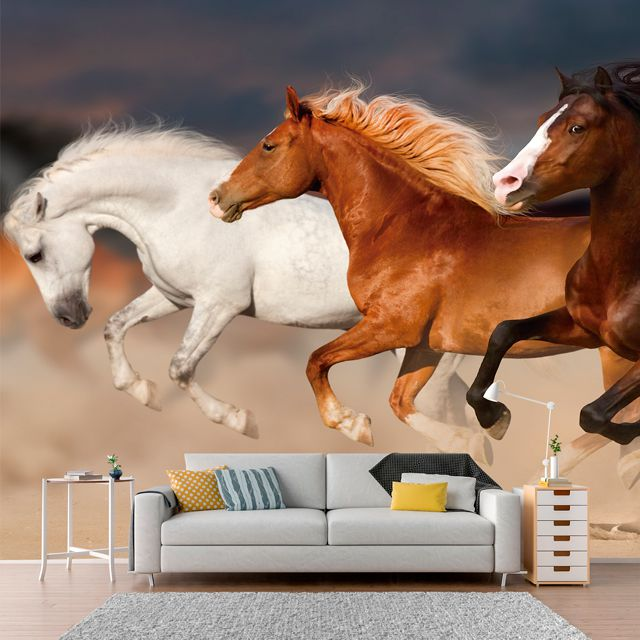 Adesivo de Parede Foto Mural Cavalo F004