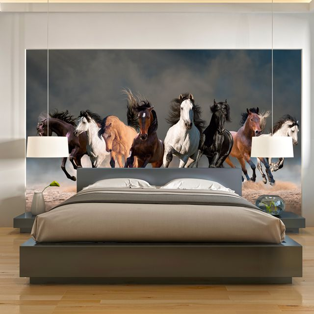 Adesivo de Parede Foto Mural Cavalo F006