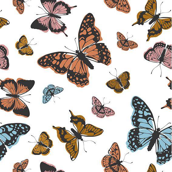 Papel de Parede Borboletas Colorida Adesivo P391