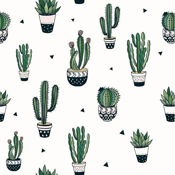 Papel de Parede Cactus Triangulos Vasos Adesivo P362