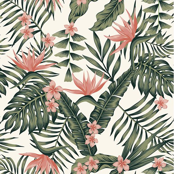 Papel de Parede Tropical Flores Rosas Costela de Adão Adesivo P361