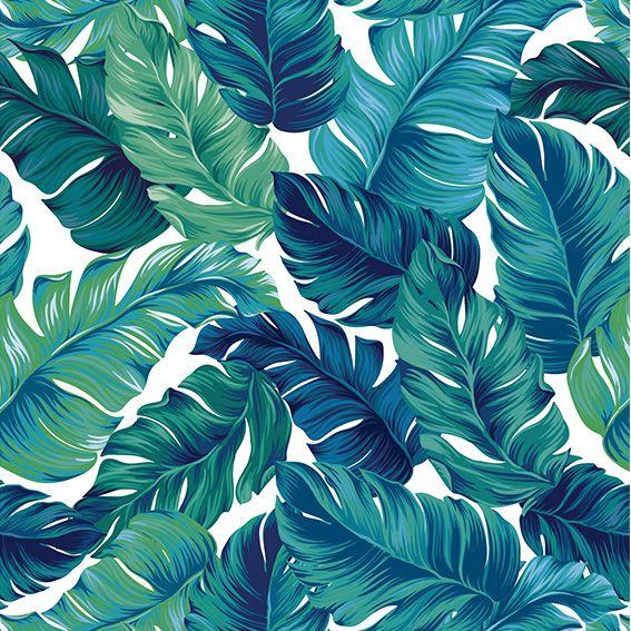 Papel de Parede Folhas Costela de Adão Tropical Adesivo P353