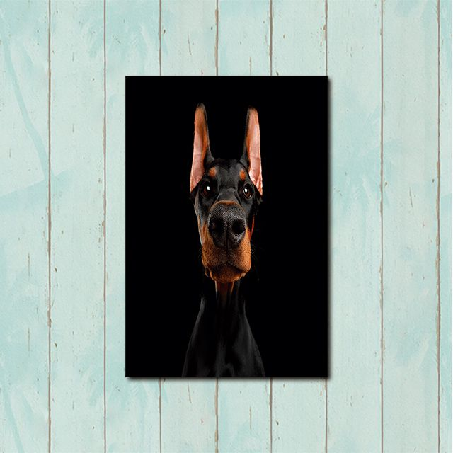 Poster Decorativo Cachorro PL478