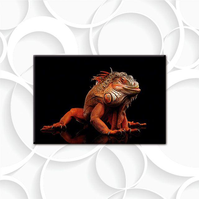 Poster Decorativo Camaleão PL449