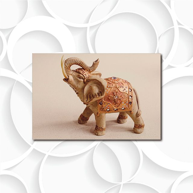 Poster Decorativo Elefante Indiano PL464