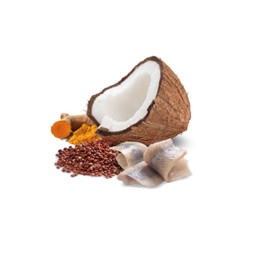 Ração Úmida Farmina N&D Quinoa Skin & Coat Arenque e Coco para Gatos Adultos 80 g  - Focinharia